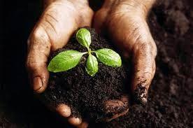 Ποσά επιδότησης του υπομέτρου 10.1.04: Μείωση της ρύπανσης νερού από γεωργική δραστηριότητα