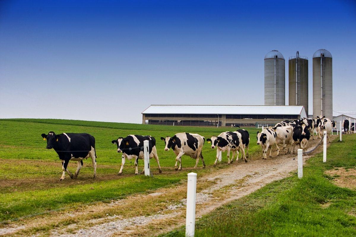 Μείωση κόστους έκδοσης Αδειών Δόμησης (Οικοδομικών Αδειών) στις αγροτικές περιοχές