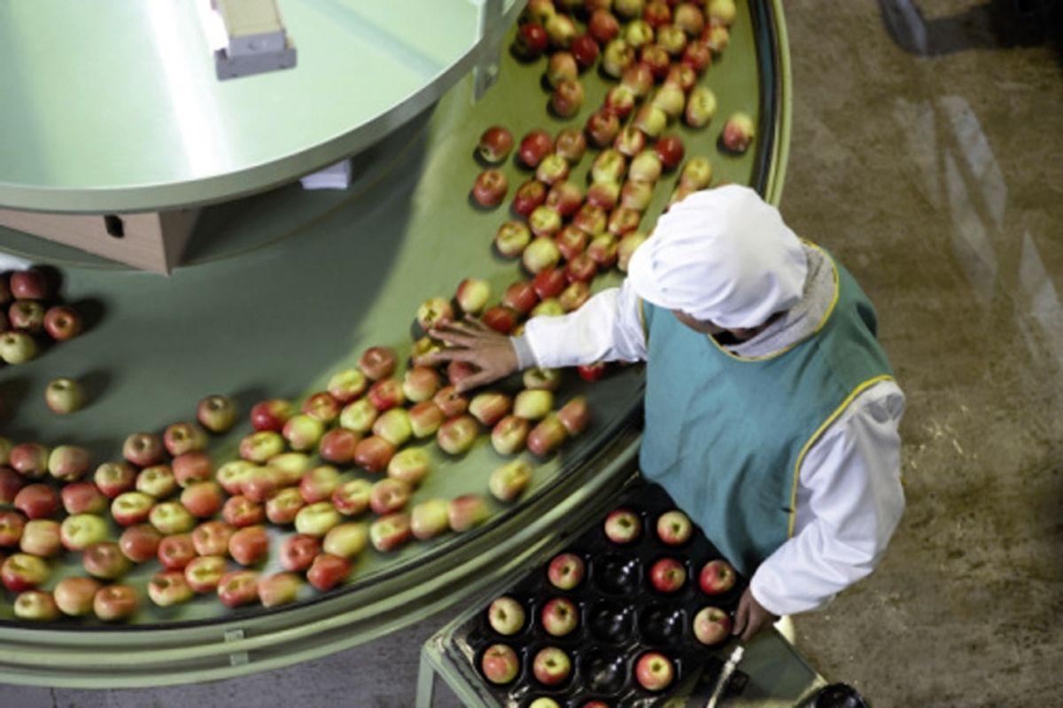 Τι ποσοστό επιδότησης (αναλόγως του κλάδου) δικαιούται η κάθε Περιφέρεια στο Μέτρο 4.2 της Μεταποίησης Τροφίμων;