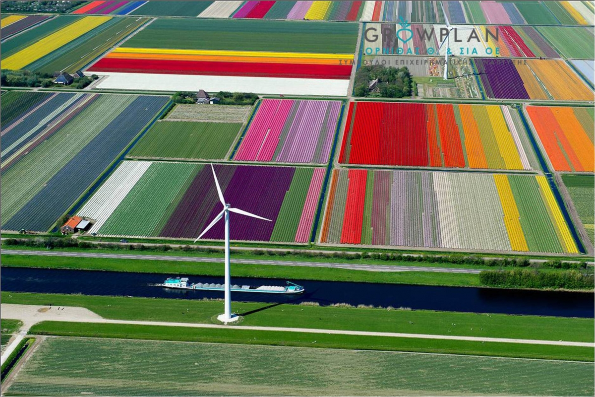 Πώς η καινοτομία οδήγησε την Ολλανδία στην κορυφή