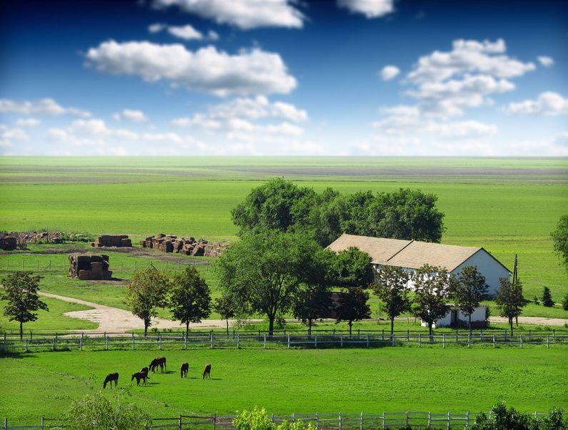 Αγορά Αγροτικής Γης