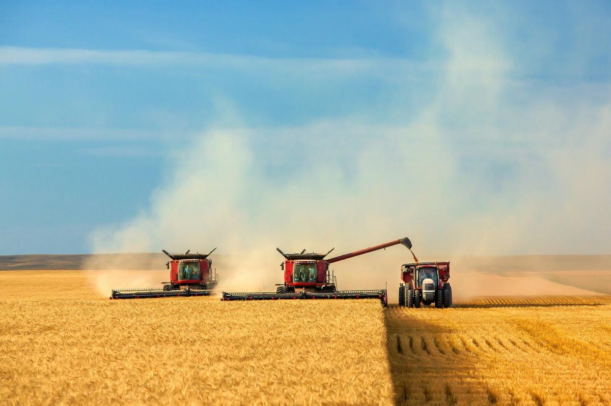 Πότε θα εγκριθούν οι επιλαχόντες Νέοι Αγρότες και πότε θα προκηρυχθούν τα Σχέδια Βελτίωσης;